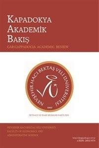 Kapadokya Akademik Bakış