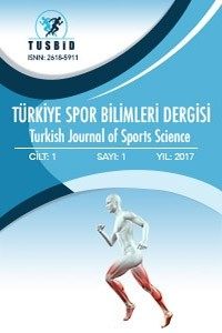 Turkish Journal of Sports Science