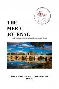 Meriç Uluslararası Sosyal ve Stratejik Araştırmalar Dergisi