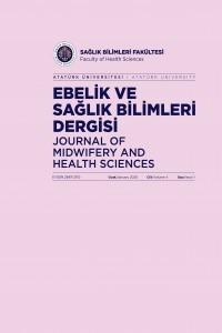 Ebelik ve Sağlık Bilimleri Dergisi