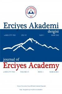 Erciyes Akademi