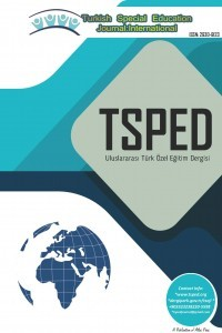 Turkish Special Education Journal: International