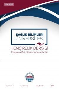 Sağlık Bilimleri Üniversitesi Hemşirelik Dergisi