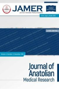 Journal of Anatolian Medical Research