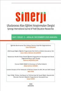 Sinerji Uluslararası Alan Eğitimi Araştırmaları Dergisi