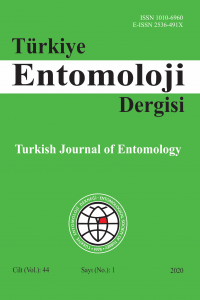 Turkish Journal of Entomology