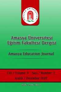 Amasya Education Journal