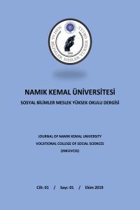 Namık Kemal Üniversitesi Sosyal Bilimler Meslek Yüksek Okulu Dergisi